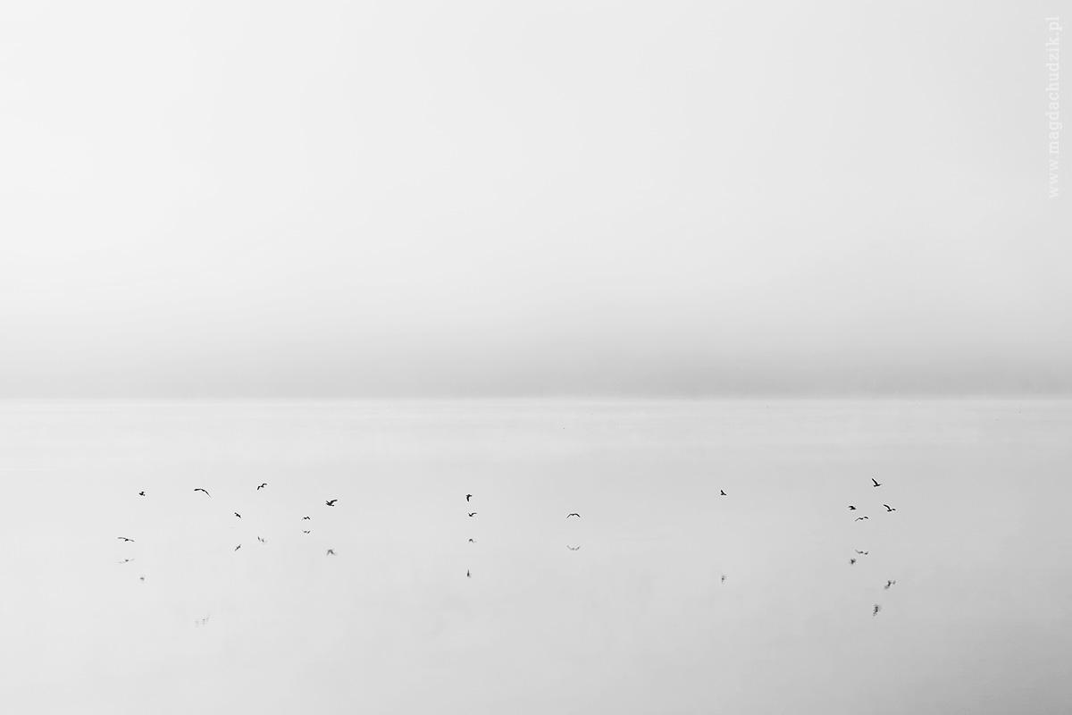 Jezioro Żywieckie o poranku